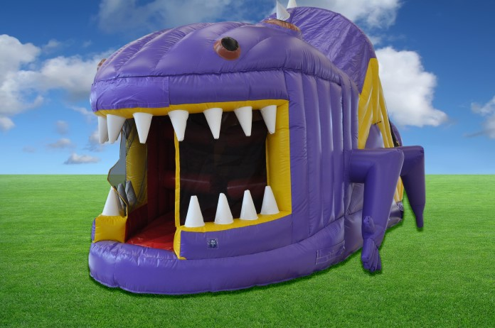 Purple Lizard Obstacle Course